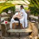 Best Western Plus Hotel massage