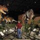 The models at  the Dinosaur Museum in Branson, Missouri were made by paleo-artists who fashioned molds from the original dinosaur skeletons and then created the bodies