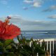 Flower And Ocean Views at Coral Sands Inn In Daytona Beach / Ormond Beach, Florida.