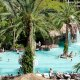 Flamingo Las Vegas Hotel & Casino pool overview
