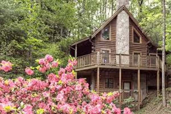 cheap family discount vacation 1 bedroom luxury cabin smoky mountains