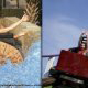 The log flume and the wooden coaster at the Family Kingdom in Myrtle Beach