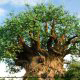 Ancient tree replica adorns the landscape at Disney's Animal Kingdom in Orlando, Florida.