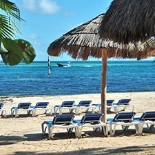 $599 | Oasis Palm Beach Resort | Summer Cancun Vacation | Standard/Deluxe Hotel Room | 7 day 6 night | $100 Dining Dough