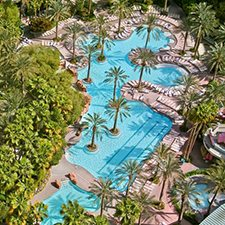 $269 | Flamingo Las Vegas Hotel and Casino | 4th of July Las Vegas Vacation | Deluxe Hotel Room | 5 day 4 night | 2 Show Tickets