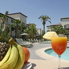 $179 | Tuscany Suites and Casino | Memorial Day Las Vegas Vacation | 1 Bedroom Suite | 4 day 3 night | $50 Dining Dough