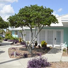 New Smyrna Beach Vacations - Coconut Palms Beach Resort vacation deals